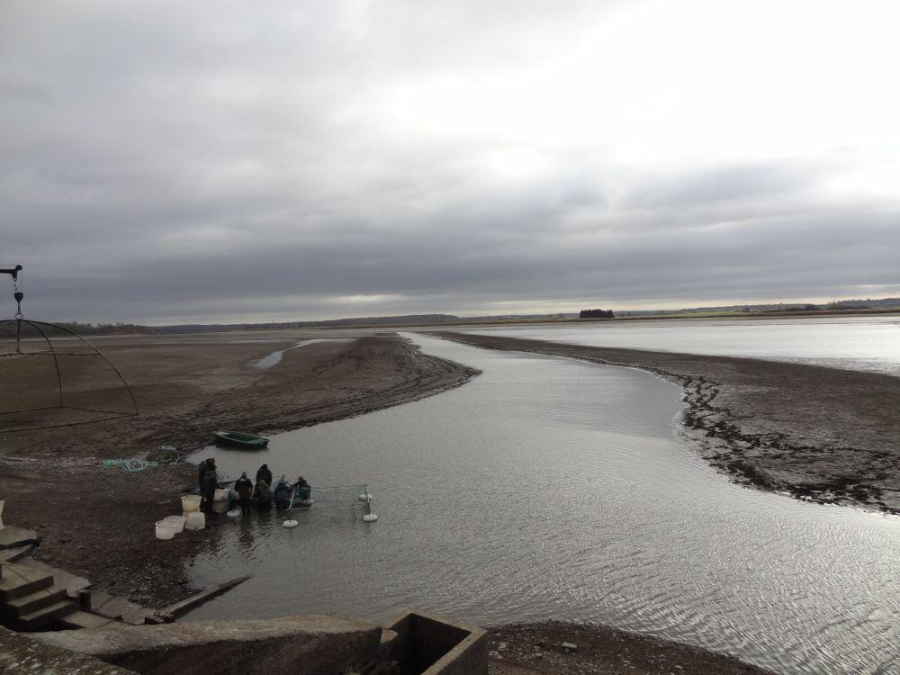 De lac la pêche le site officiel